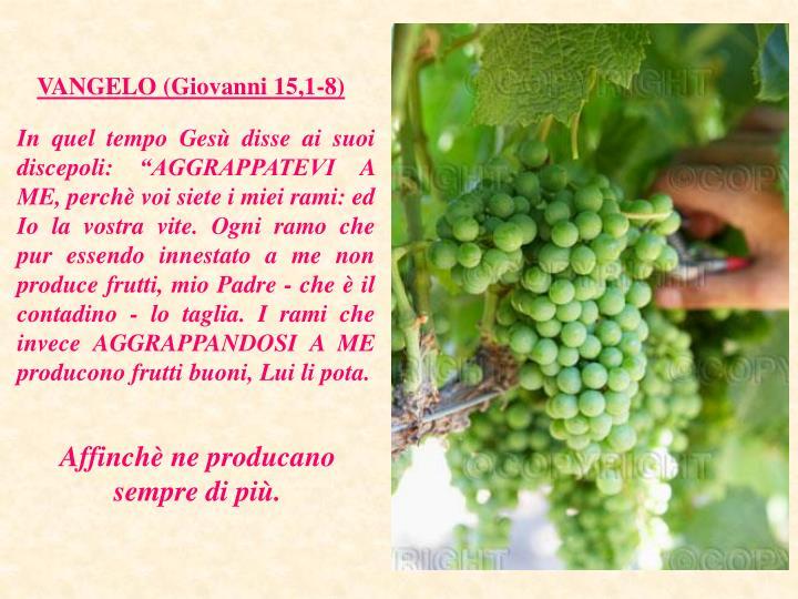 VANGELO (Giovanni 15,1-8)