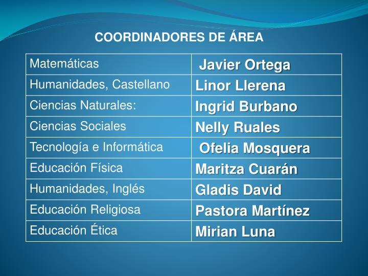 COORDINADORES DE ÁREA
