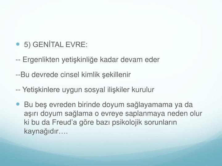 5) GENİTAL EVRE: