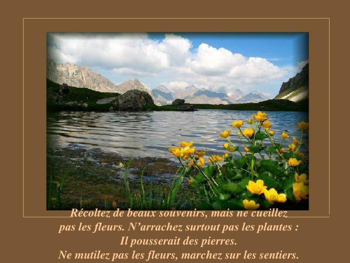 Récoltez de beaux souvenirs, mais ne cueillez                      pas les fleurs. N'arrachez surtout pas les plantes :                    Il pousserait des pierres.                                                          Ne mutilez pas les fleurs, marchez sur les sentiers.