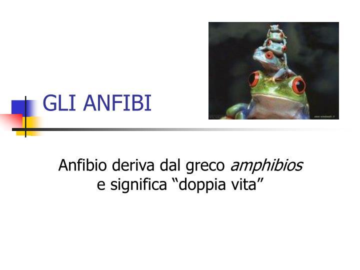 GLI ANFIBI