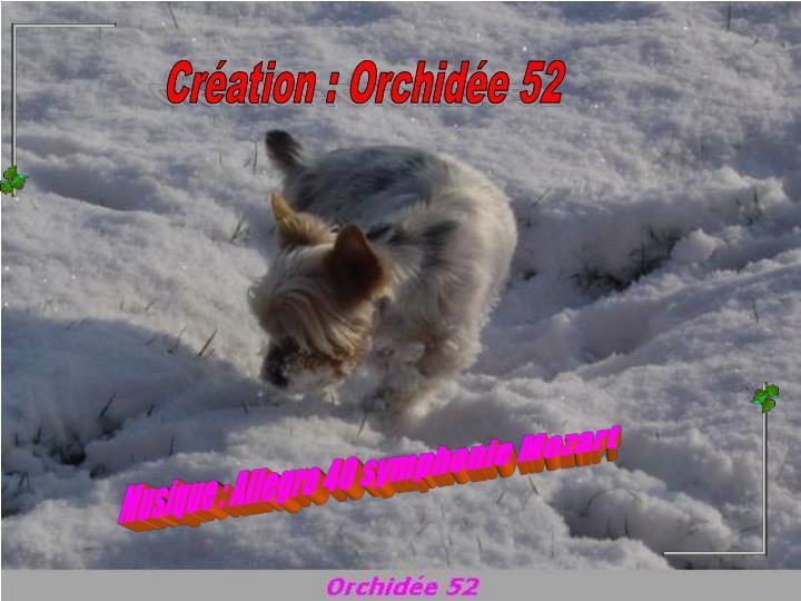 Création : Orchidée 52