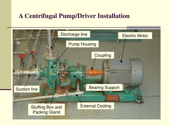 A Centrifugal Pump/Driver Installation