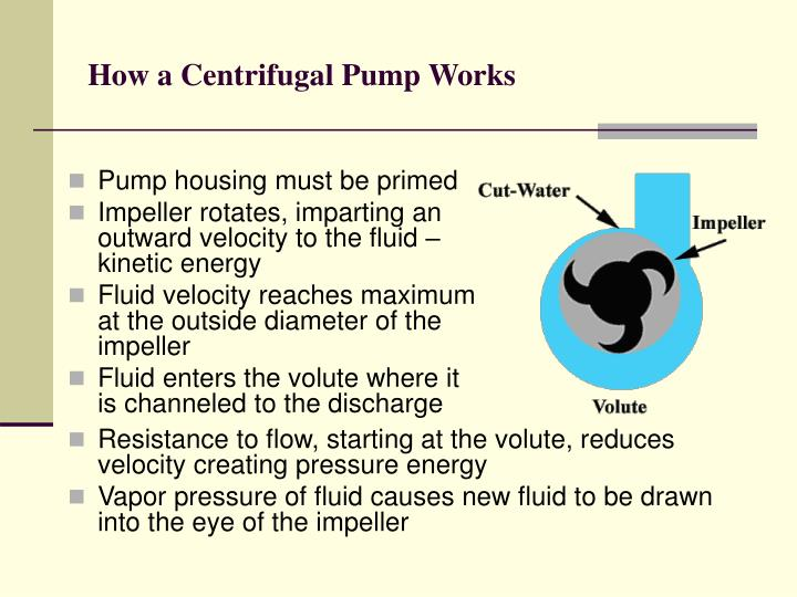 How a Centrifugal Pump Works