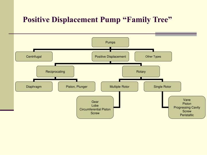 "Positive Displacement Pump ""Family Tree"""