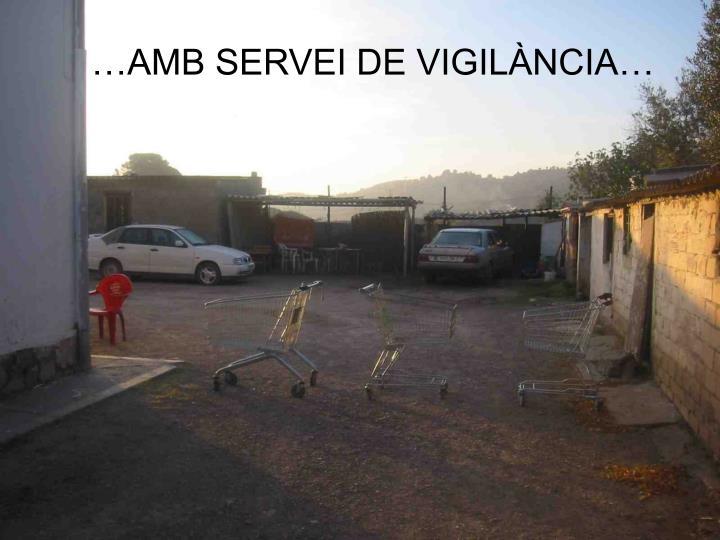…AMB SERVEI DE VIGIL