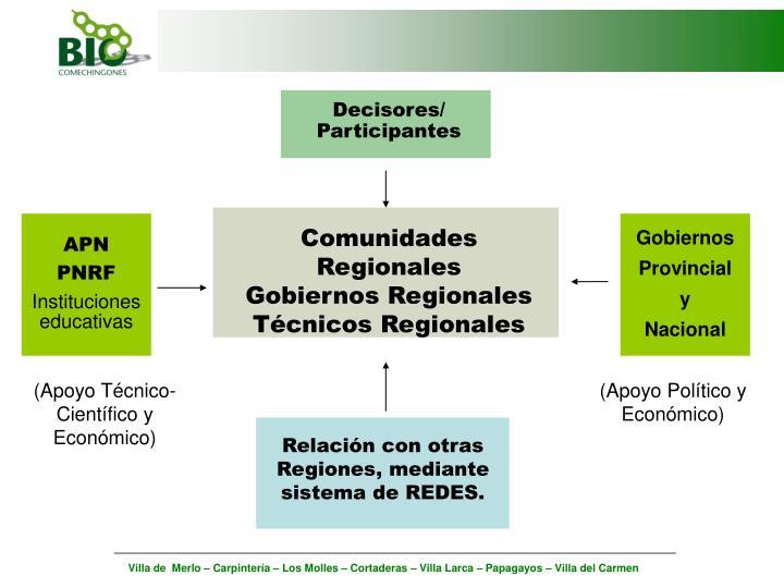 Decisores/ Participantes