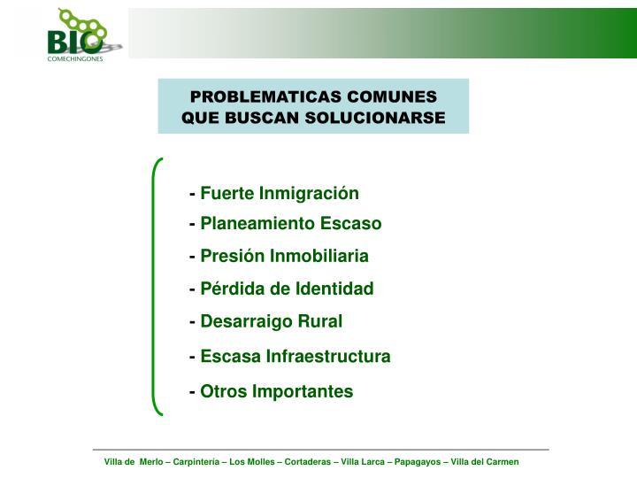 PROBLEMATICAS COMUNES