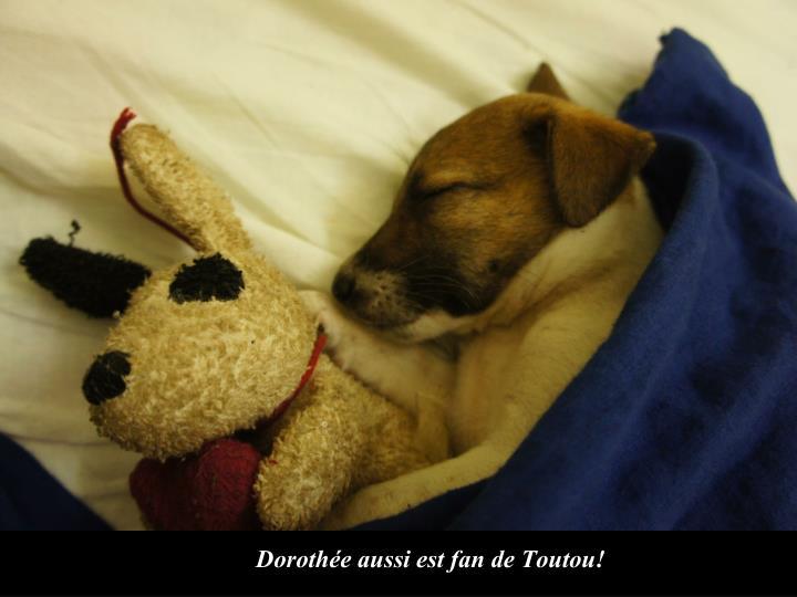 Dorothée aussi est fan de Toutou!