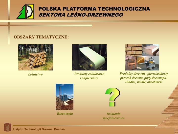 POLSKA PLATFORMA TECHNOLOGICZNA