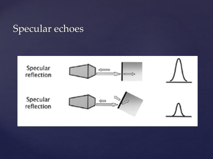 Specular echoes