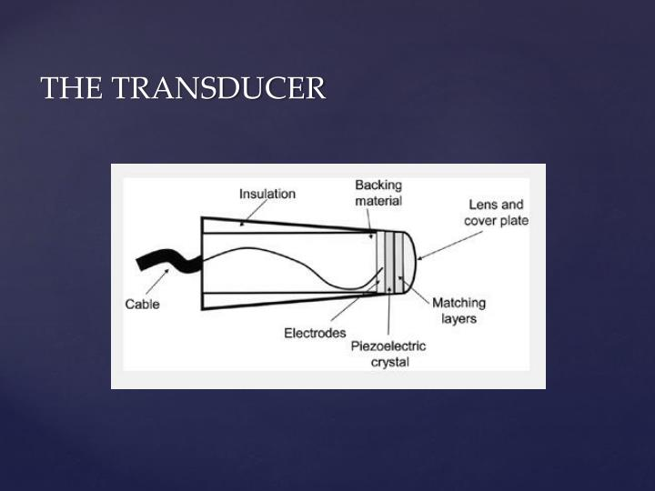 THE TRANSDUCER