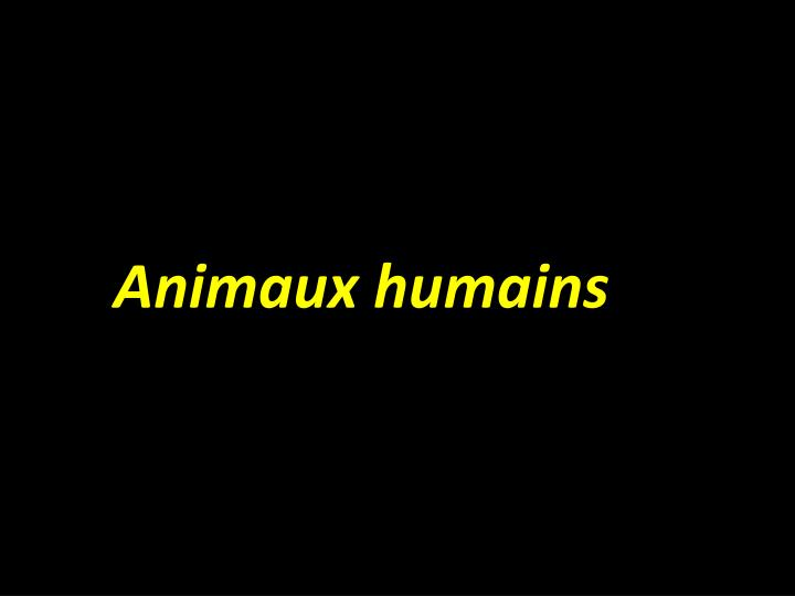 Animaux humains