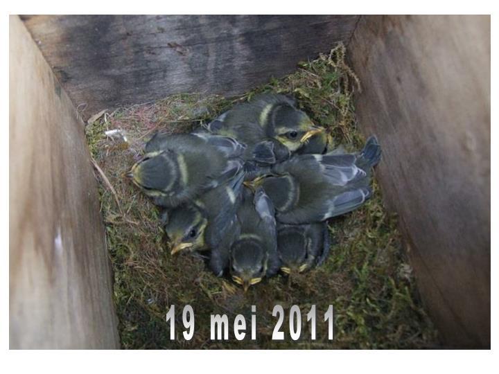19 mei 2011