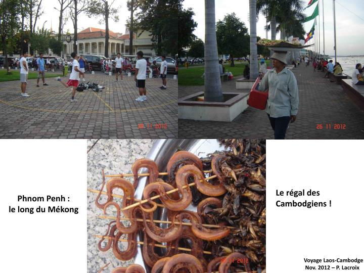 Le régal des Cambodgiens !