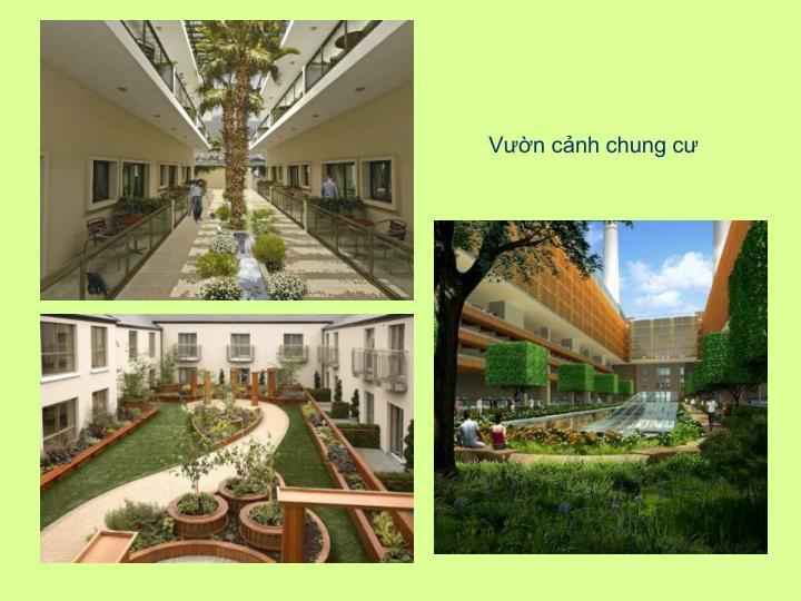 Vườn cảnh chung cư