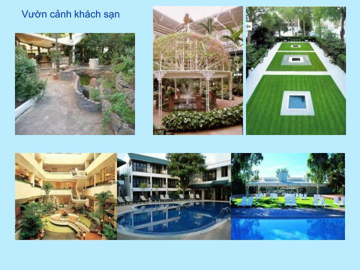 Vườn cảnh khách sạn