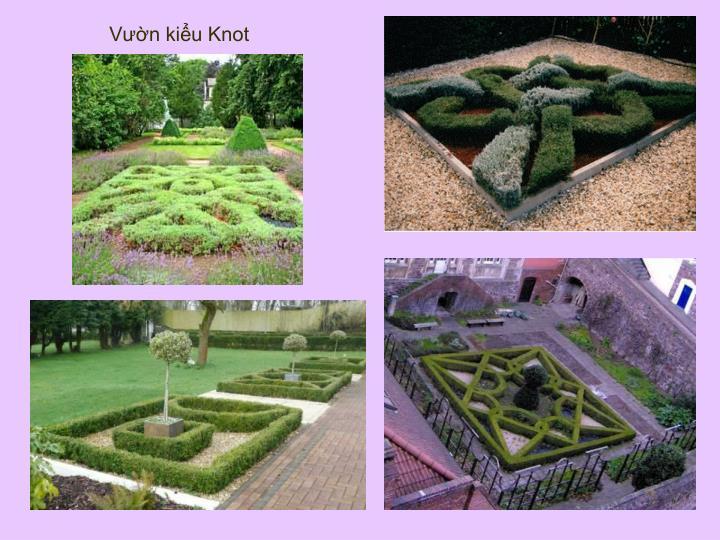 Vườn kiểu Knot