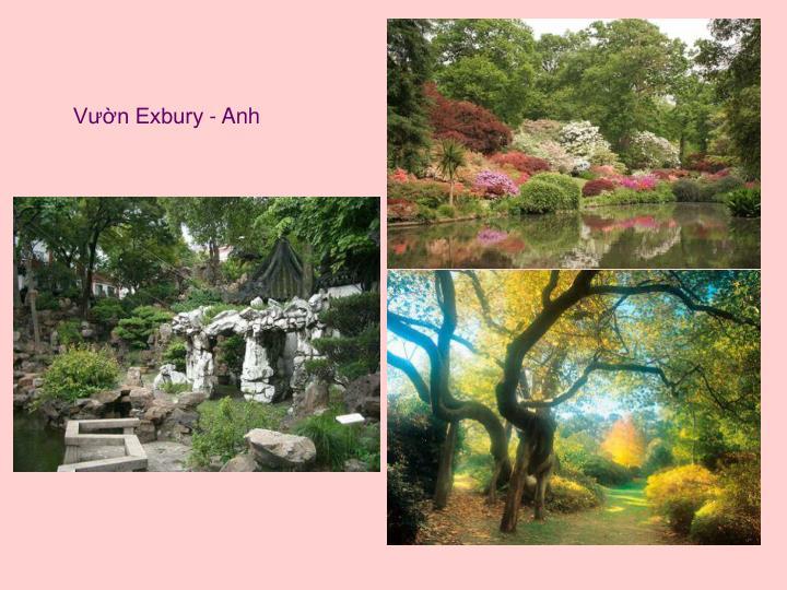 Vườn Exbury - Anh