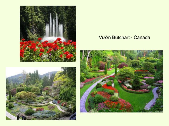 Vườn Butchart - Canada