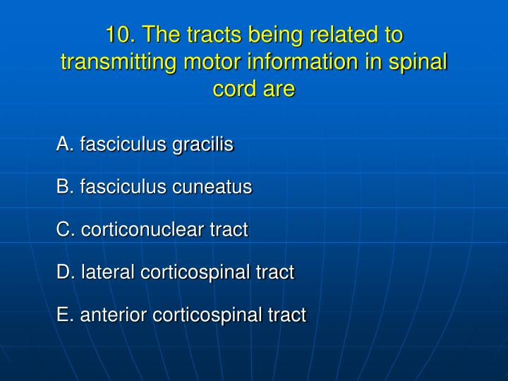 10. The tracts being related to transmitting motor information in spinal cord are