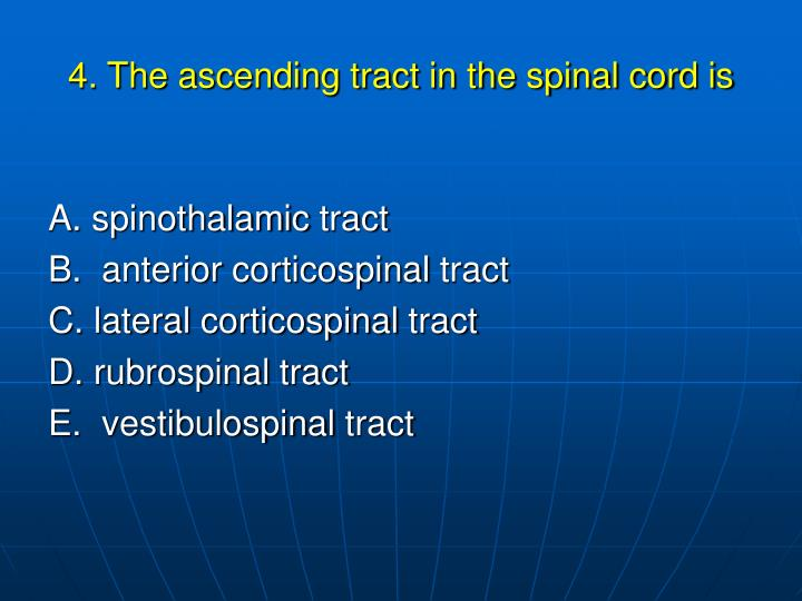 4. The ascending tract in the spinal cord is
