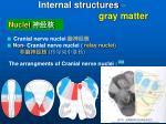 internal structures gray matter