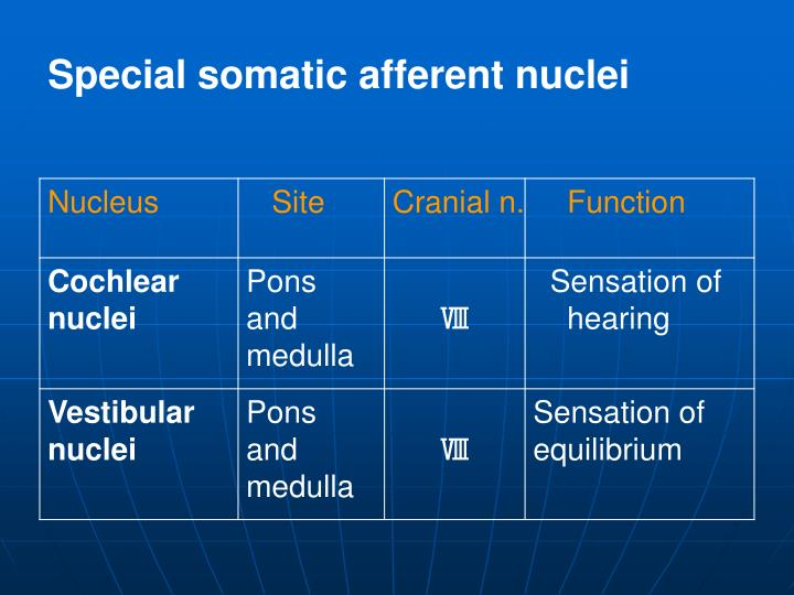 Special somatic afferent nuclei