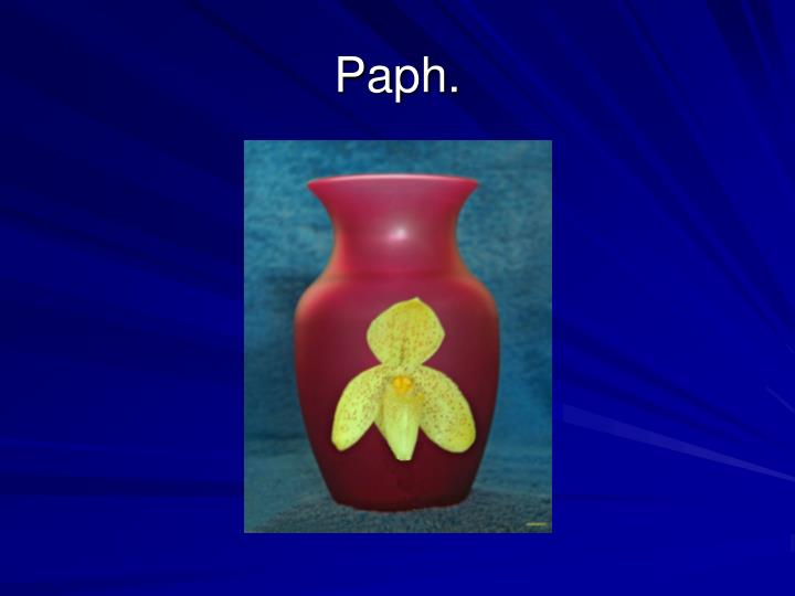 Paph.