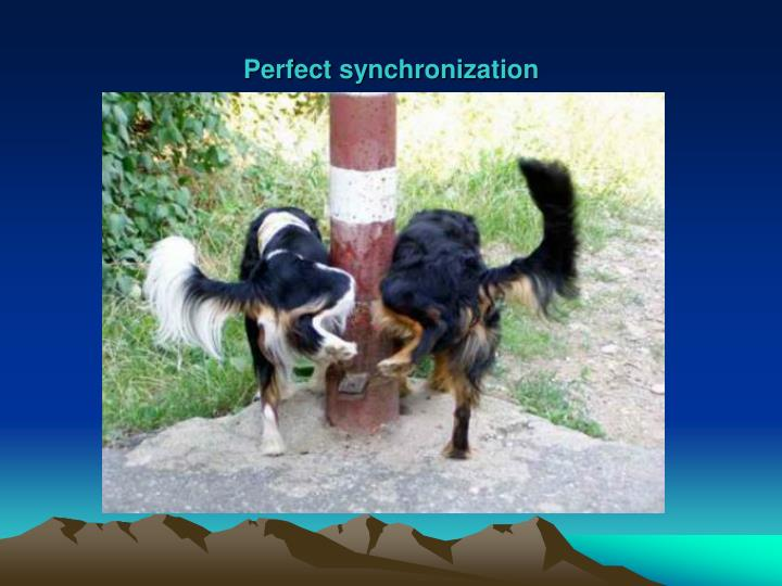 Perfect synchronization