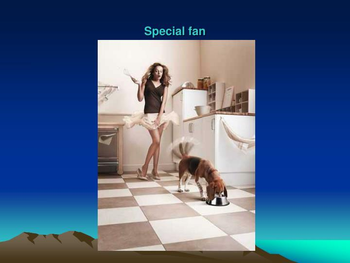 Special fan