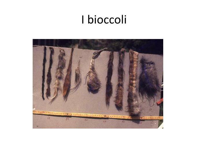 I bioccoli