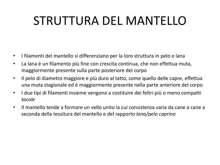 STRUTTURA DEL MANTELLO