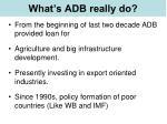 what s adb really do