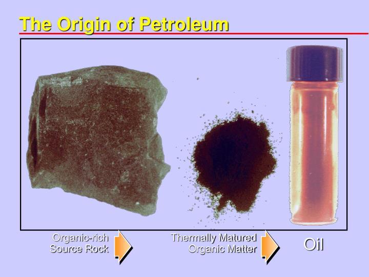 The Origin of Petroleum