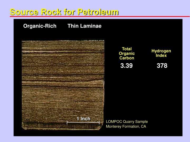 Source Rock for Petroleum