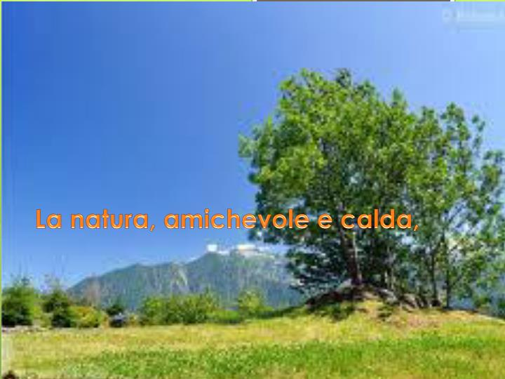 La natura, amichevole e calda,
