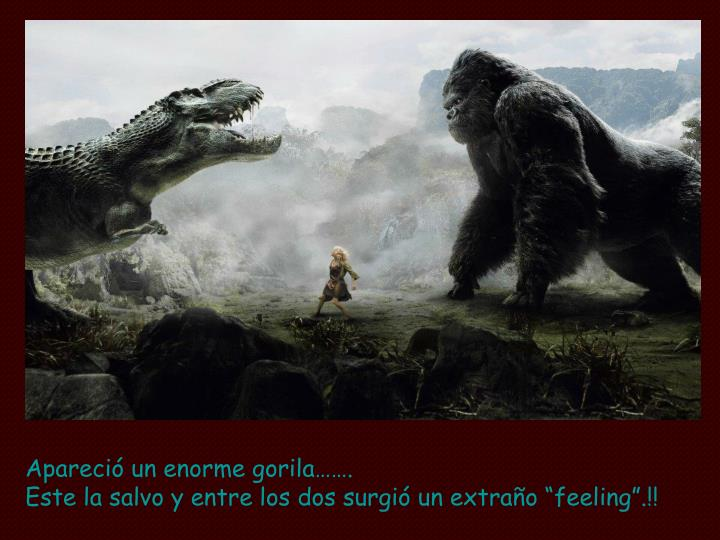 Apareció un enorme gorila…….