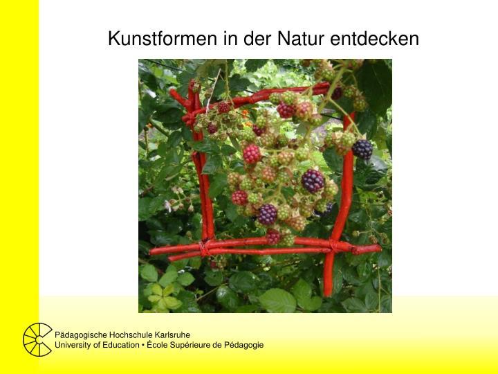 Kunstformen in der Natur entdecken