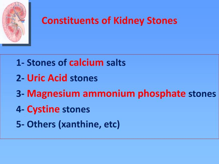 Constituents of Kidney Stones