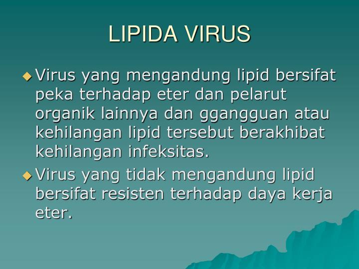 LIPIDA VIRUS