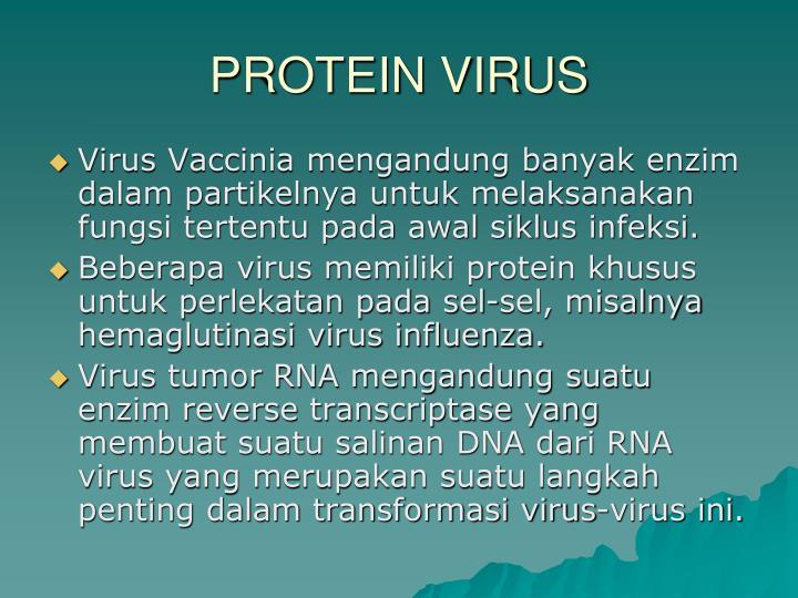 PROTEIN VIRUS