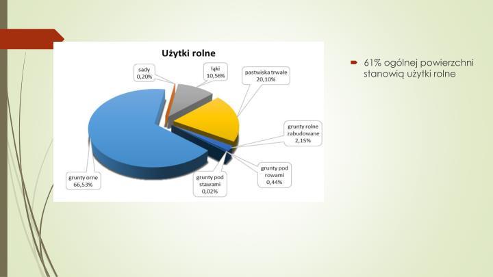 61% ogólnej powierzchni stanowią użytki rolne