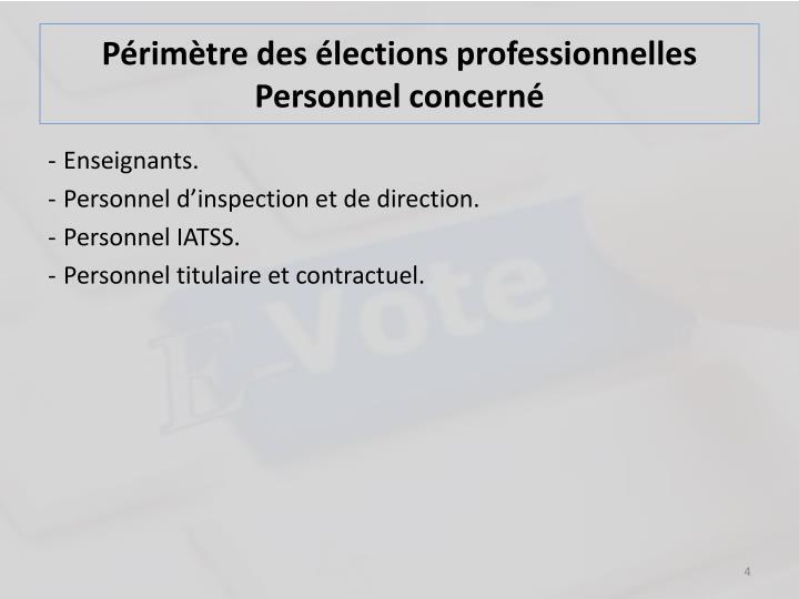 Périmètre des élections professionnelles