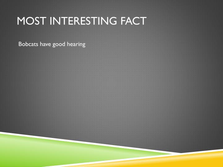 Most Interesting Fact