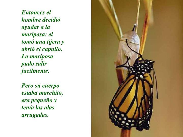 Entonces el hombre decidió ayudar a la mariposa: el tomó una tijera y abrió el capullo.