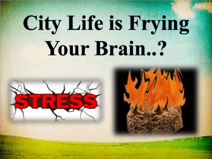 City Life is Frying Your Brain..?