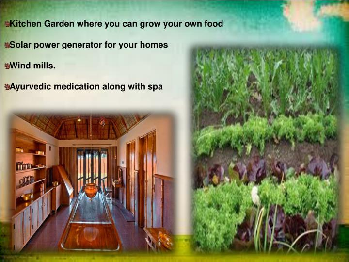 Kitchen Garden where you can grow your own food