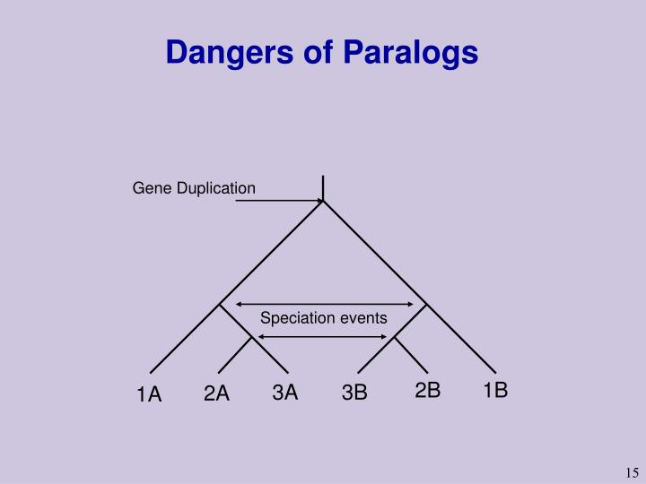 Dangers of Paralogs