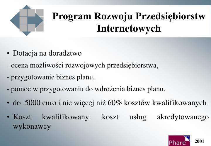 Program Rozwoju Przedsiębiorstw Internetowych